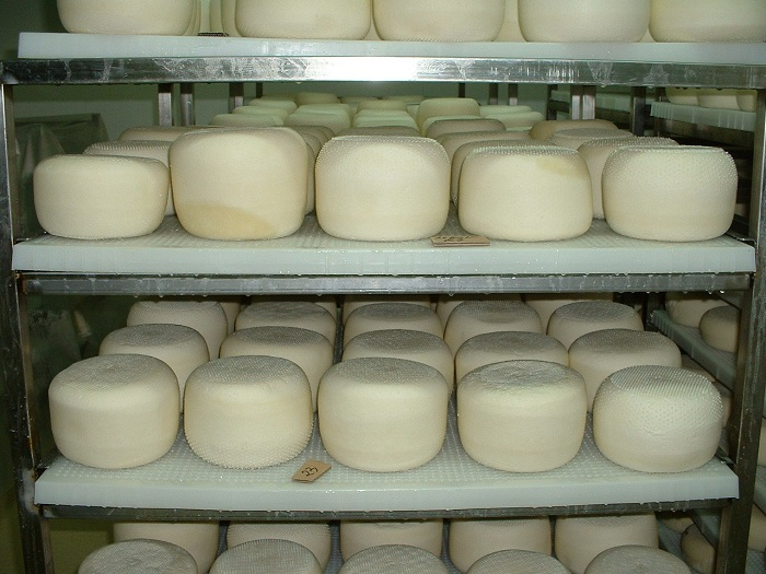 Полка для хранения сыра