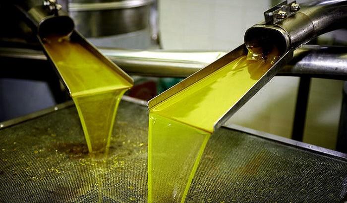 Какое оборудование необходимо для производства растительного масла