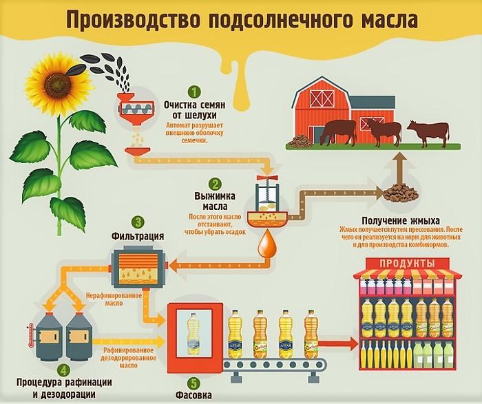Какова технология производства растительного масла