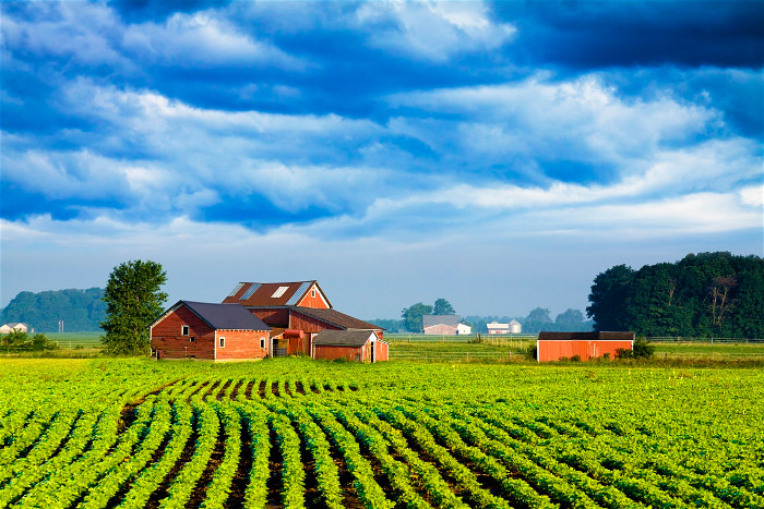 Личное подсобное хозяйство сельских жителей