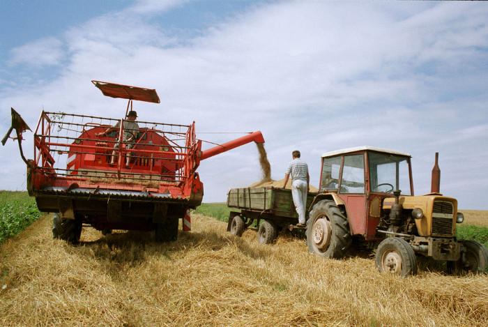 Деятельность фермерского хозяйства