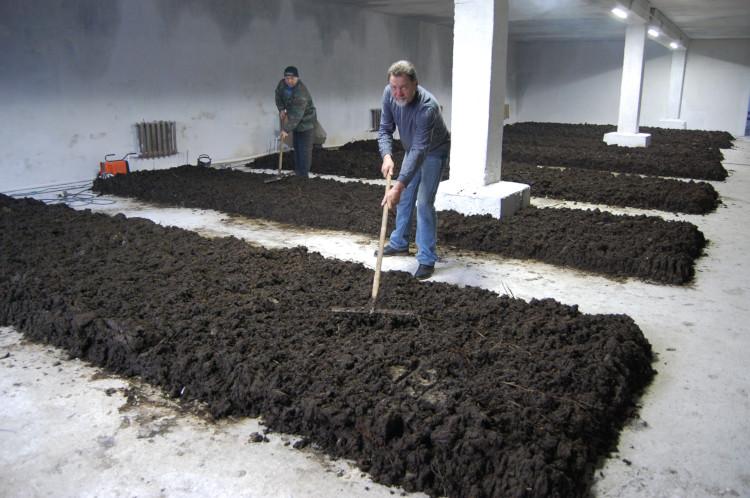 Помещение для производства биогумуса