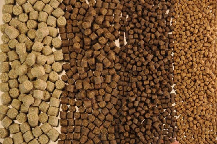 Виды гранулированного корма