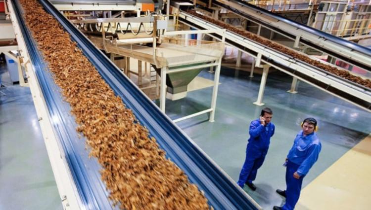 Линия производства табака