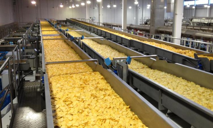 Организация производства чипсов