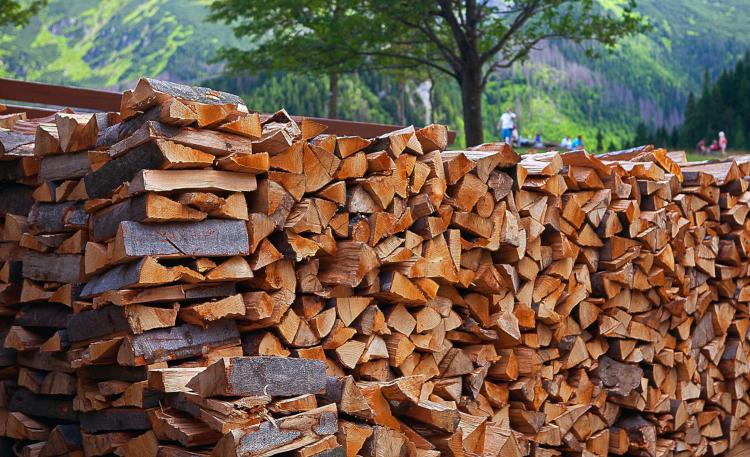 Бизнес на дровах