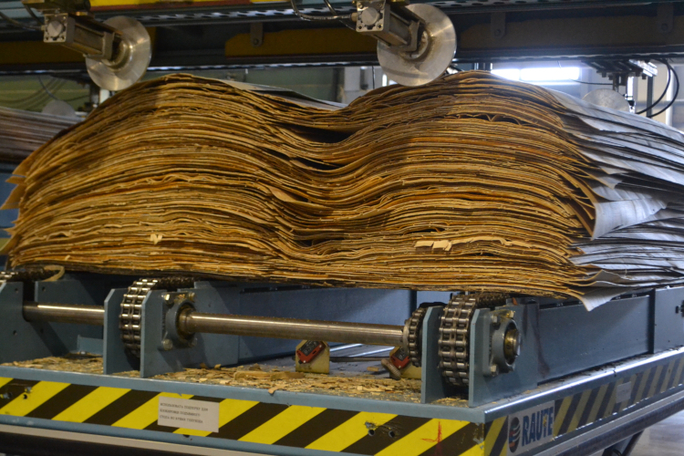 Технология производства фанеры