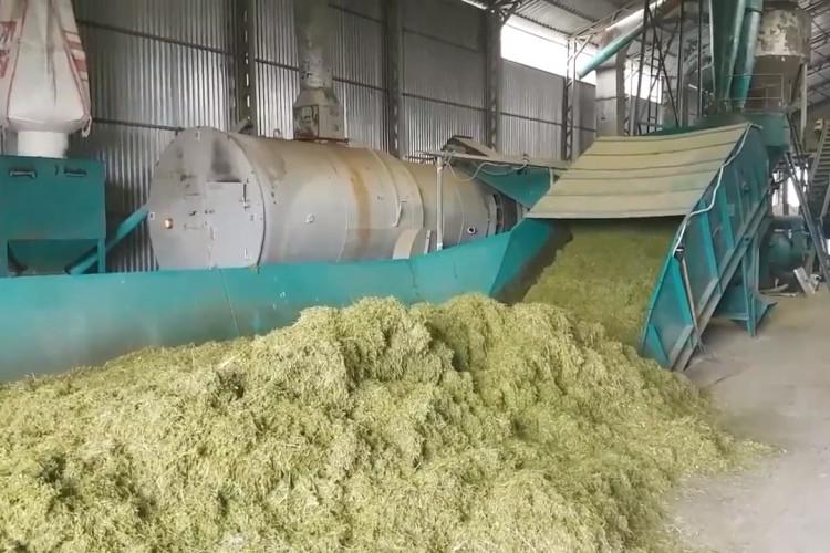 Производство травяной муки