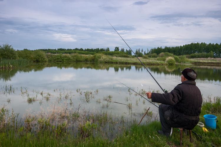 Озеро в аренду московская область